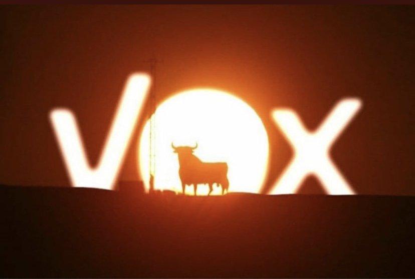 VOX, el nuevo partido fachoide - Página 3 D4wurHfW0AA3Uuj