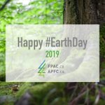 Image for the Tweet beginning: Happy #EarthDay! Canada's forests purify