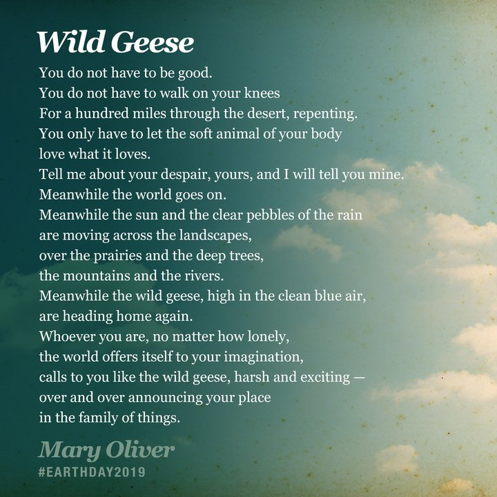 One of my favorite poems for you on Earth Day. Let us come together to be better stewards of the earth and let the world offer itself to our imagination.  PS Thank you for the Netflix love this weekend. A powerful tonic for the vulnerability hangover.