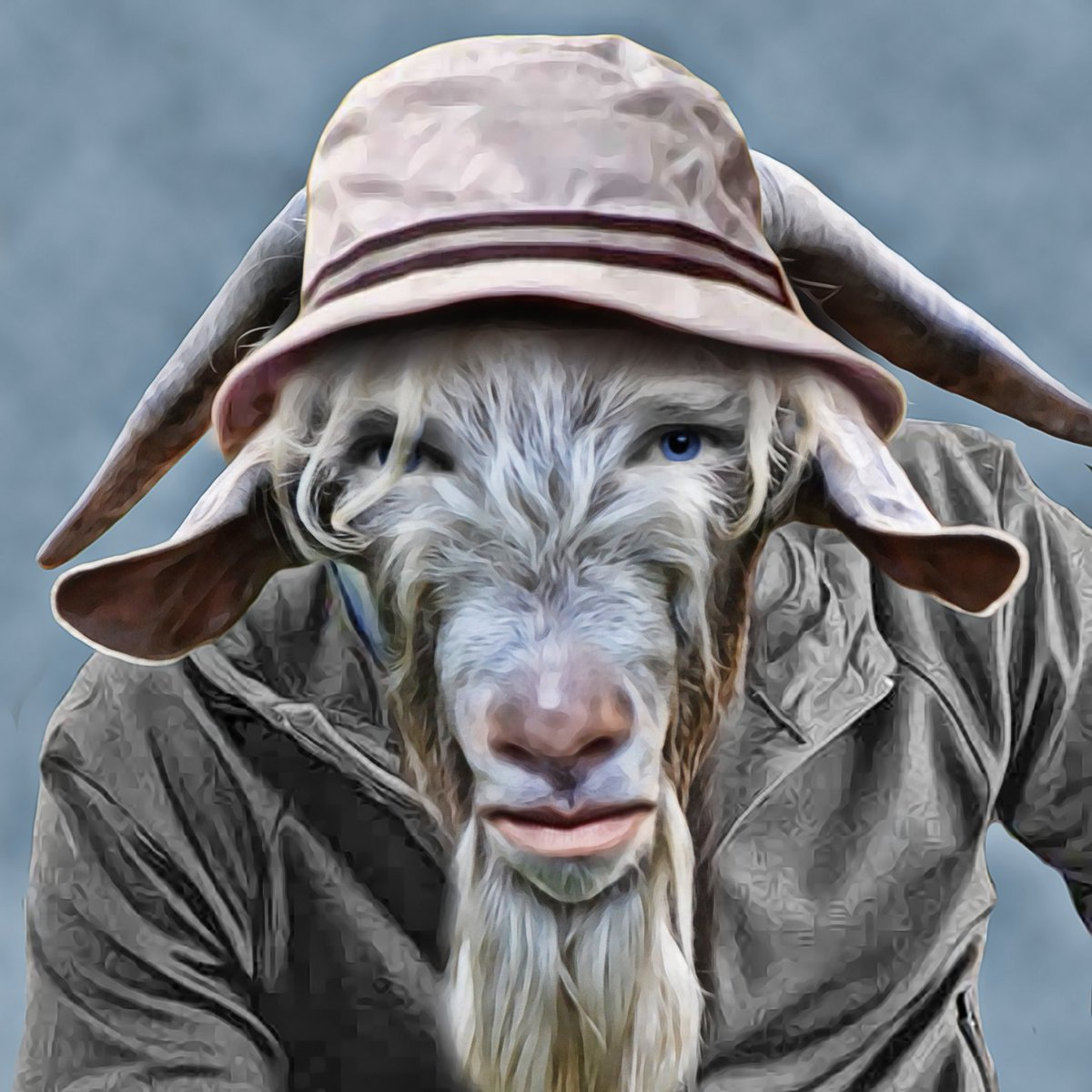 buy popular 21786 20bb2 UglyOld Bitcoin Goat