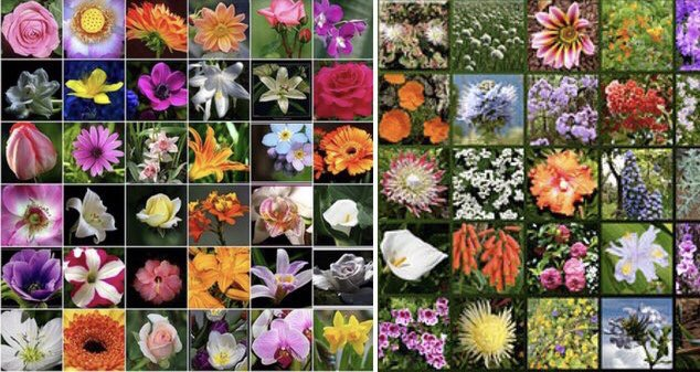 Polatlı'da kır çiçeği. Bitlis'te Papatya. karanfil,lale ,sümbülüm Uşak ,Kütahya Van'da.Leylaklarla yas tutarken Gül oldum Isparta 'da. Yasemin  Nilüfer ,Menekşe, Suruçta Nar çiçeği HARRAN'da Sardunya  #Bençocuğum sevgiyle tut elimden .@tcmeb @ziyaselcuk @serafettinturan @hmzaydg