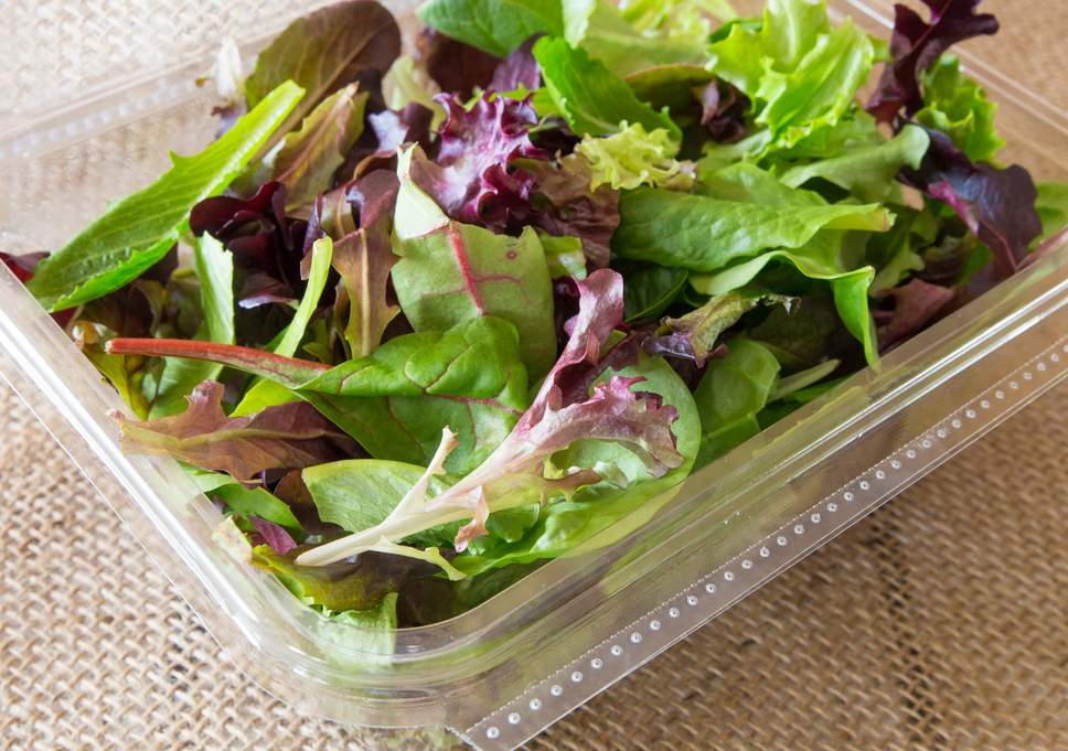 test Twitter Media - If you ever find an unwanted #pest in a food item you bought at a #Georgia store (ex. a bug in salad mix), you can report it to the GDA by reaching out to our compliance manager, +/or @FDAfood. Learn more about how to submit a complaint here: https://t.co/cxdzlaKzIG. #NPMM https://t.co/OgXVGNe88E