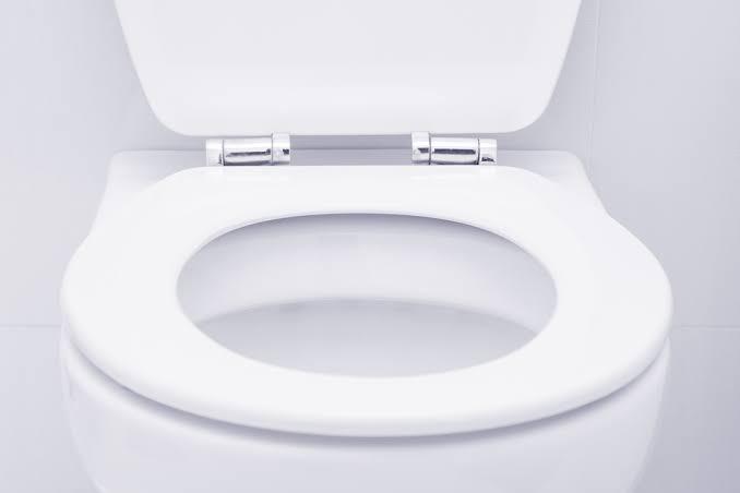 Astounding Thread By Sindivanzyl Is A Toilet Seat A Mode Of Theyellowbook Wood Chair Design Ideas Theyellowbookinfo