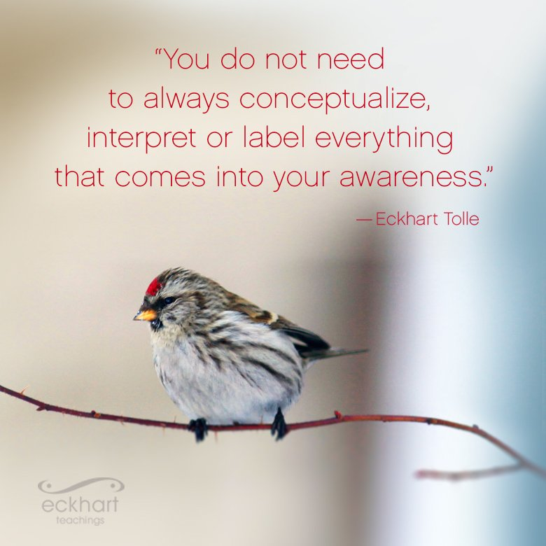"""""""You do not need to always conceptualize, interpret, or label everything that comes into your #awareness."""" - @EckhartTolle   #MondayMotivation #MondayThoughts #ThinkBIGSundayWithMarsha @gary_hensel @KariJoys @Inspireu2Action #meditation #BePressent #TuesdayThoughts #consciousness"""