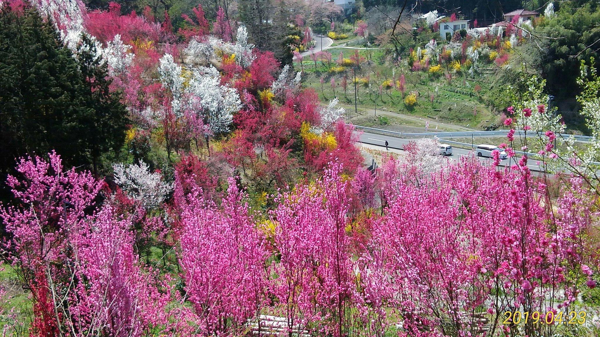 飯野花やしき公園