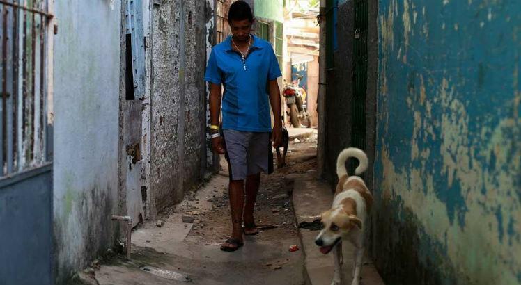 Torcedor e cachorro passam bem após agressão depois da final do Pernambucano: