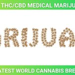 Image for the Tweet beginning: Visit our Informative #Cannabis blog