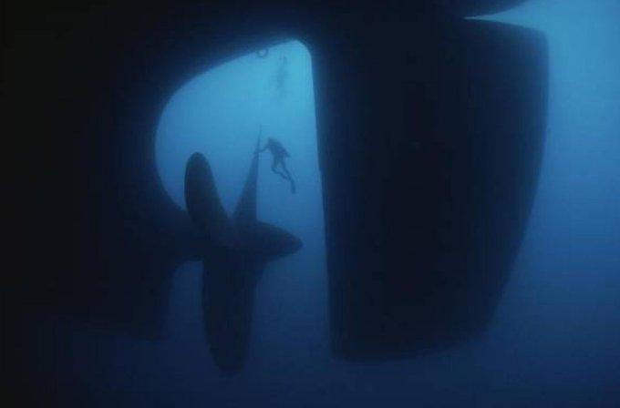 水中 人工 物 恐怖 症
