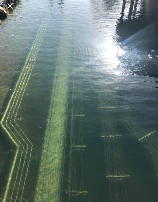 こういうの怖い人いる?水中人工物恐怖症に苦悩する人々