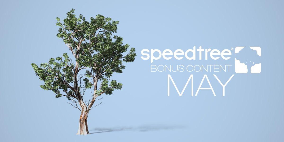 SpeedTree on Twitter: