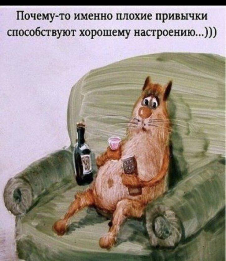 Картинки от плохого настроения, алкогольные