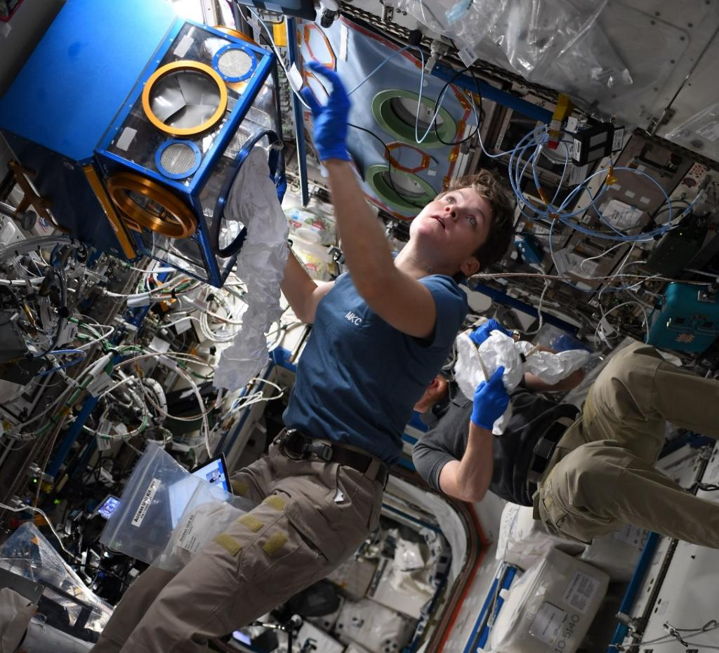 "NASA astronaut Anne McClain working with a Mouse Habitat Unit. McClain tweeted:""@ISS_Research is really phenomenal; every day we get to play a part in learning about our universe, our Earth, and the creatures that live on it. Getting to do science on the ceiling? Well, now that's just cool!"""