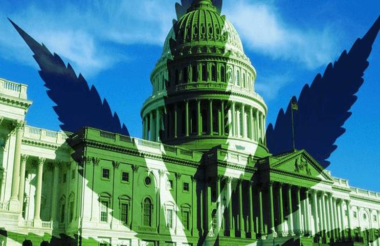 美国首都华盛顿特区将娱乐大麻销售合法化