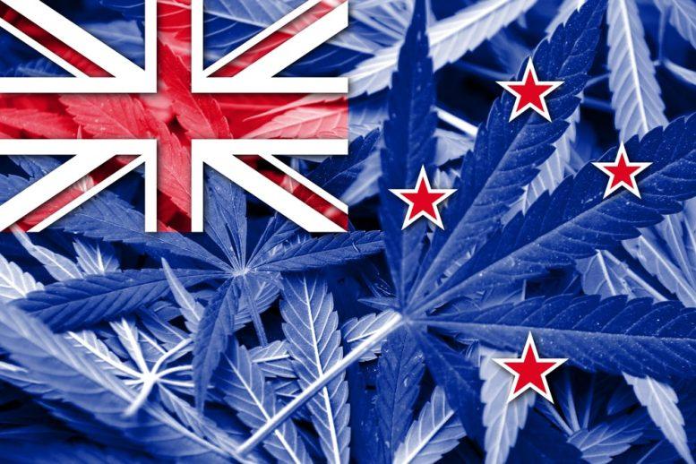 新西兰政府将公佈大麻合法化计划
