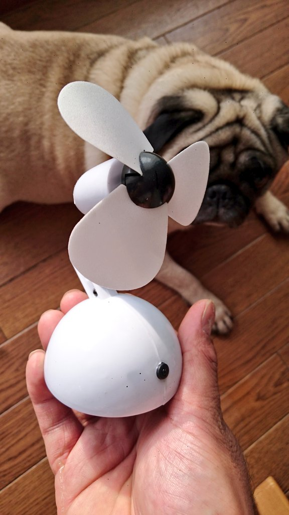 test ツイッターメディア - キャンドゥ に売ってる卓上扇風機で ベアリング慣らし機作りました😃 #mini4wd  #ミニ四駆  #キャンドゥ https://t.co/xvDFLgyQeS