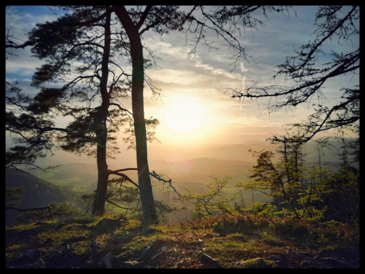 If I cannot do great things, I can do small things in a great way.  .  http://instagram.com/stef_an2710  . #aussicht #fotografie #natur #fotografieren #fotografieliebe #landschaft #landscape #leidenschaft #photography #landscapephotography  #schnee  #GameofThrones #austria  #Wienpic.twitter.com/TpPTRwUtts