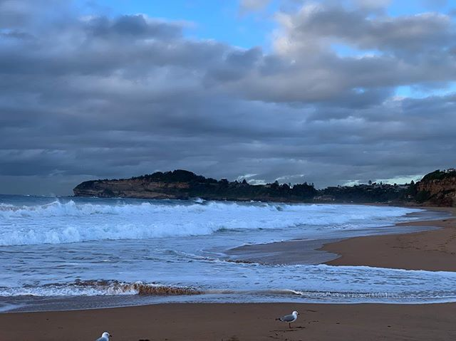 Mona Vale beach this morning :) The waves were amazing today ... . . . #missionmojo #morning #monavalebeach #wildweather #waves #nsw #amazingpic.twitter.com/Thi1w6fu5A