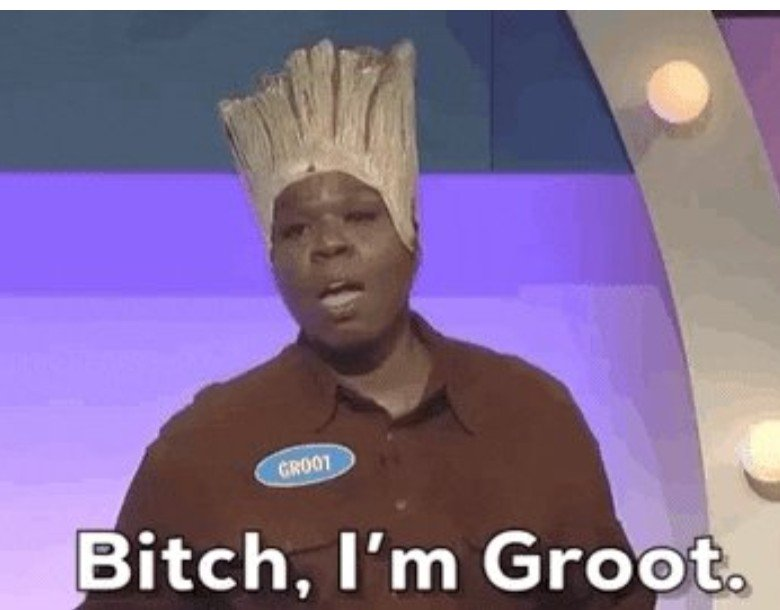 Image result for leslie jones groot