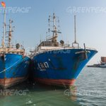 Image for the Tweet beginning: Greenpeace: 3 x #Chinese companies