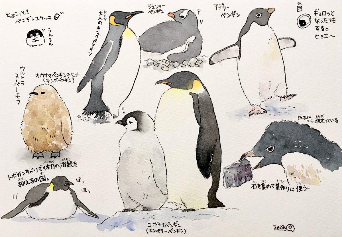 世界ペンギンの日、とっても楽しかったー!私も少しだけペンギンの絵を描いてみました🐧タグを使ってくださった皆様、タグのイラストを描かせてくださったTwitterさん、ありがとうございました🍀#世界ペンギンの日#世界ペンギンデー#ペンギンの日#worldpenguinday