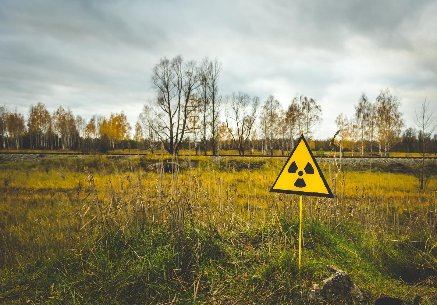 дымковская игрушка знак радиации фото картинка путин посетил увз