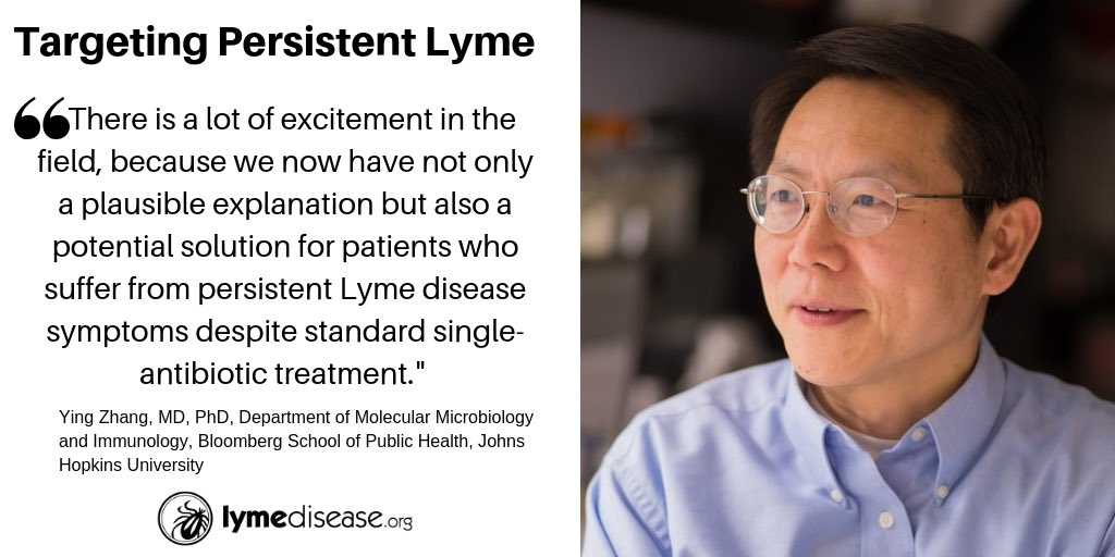 "test Twitter Media - Good news for patients with #LymeDisease | A new study sheds more light on the question of #Lyme disease symptoms that persist after a ""standard"" course of antibiotic treatment. Finds triple-drug combination clears infection in mice.  Learn more here:  https://t.co/HAg1kncTAu https://t.co/5pS4lbHwOF"