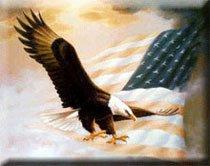 🦅🦅⭐️JD's  #VETERANS WAR BIRD⭐️🦅🦅  @JDHardin1🇺🇸  @Jayhawker4Trump ⭐️  @kvmidd67 🦅  @fortressfin 🇺🇸  @Jason_DNW ⭐️  @SmltwnAmerican 🦅  @Sky_USA_NRA 🇺🇸  @Boser55 ⭐️  @tracied51 🦅  @tgslusher 🇺🇸  @kashunco2 ⭐️  @jhjohnson1906 🦅  @tahntahn76 🇺🇸 @r111194 ⭐️  @patriotgames76 🦅 https://t.co/DmvPgk1pEY