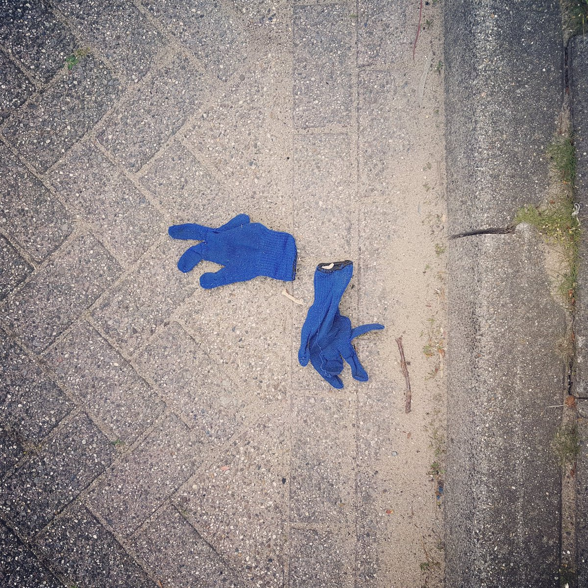 #lostgloves_collected #lostglovelover  #lostgloves #lost #gloves #autumn #winter 2018/19 nr160 a+b https://t.co/vmhgvJYLFP