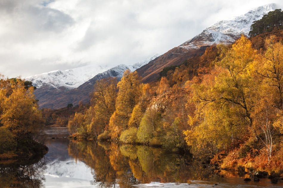Autumn Affric, by Kenneth Verburg https://t.co/8Gl6p19lW1  #Scotland #photography #landscape https://t.co/YvZa6DdnuW
