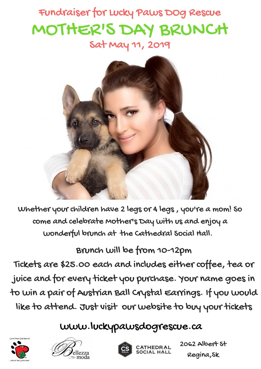 LuckyPaws Dog Rescue on Twitter: