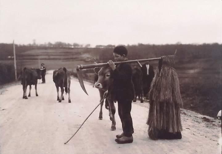 👦 Neno coa súa coroza. 📍 #Lalín #Pontevedra 🗺️ #Galiza #Galicia ⏳ 1926. 📸 Ruth Matilda Anderson. 📆 #26deAbril 📅 #FelizVenres #FelizViernes 🌇 #BosDías #BuenosDías 🥳 #FelizFinde #FelizFinDeSemana 📲 #EnGalegoDíaADía 🐦 #EuChíoEnGalego 📤 @ConcellodeLalin @turismo_lalin