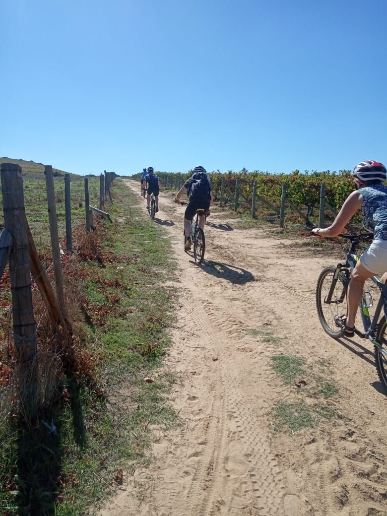 Student special for bike tours in and around Cape Town
