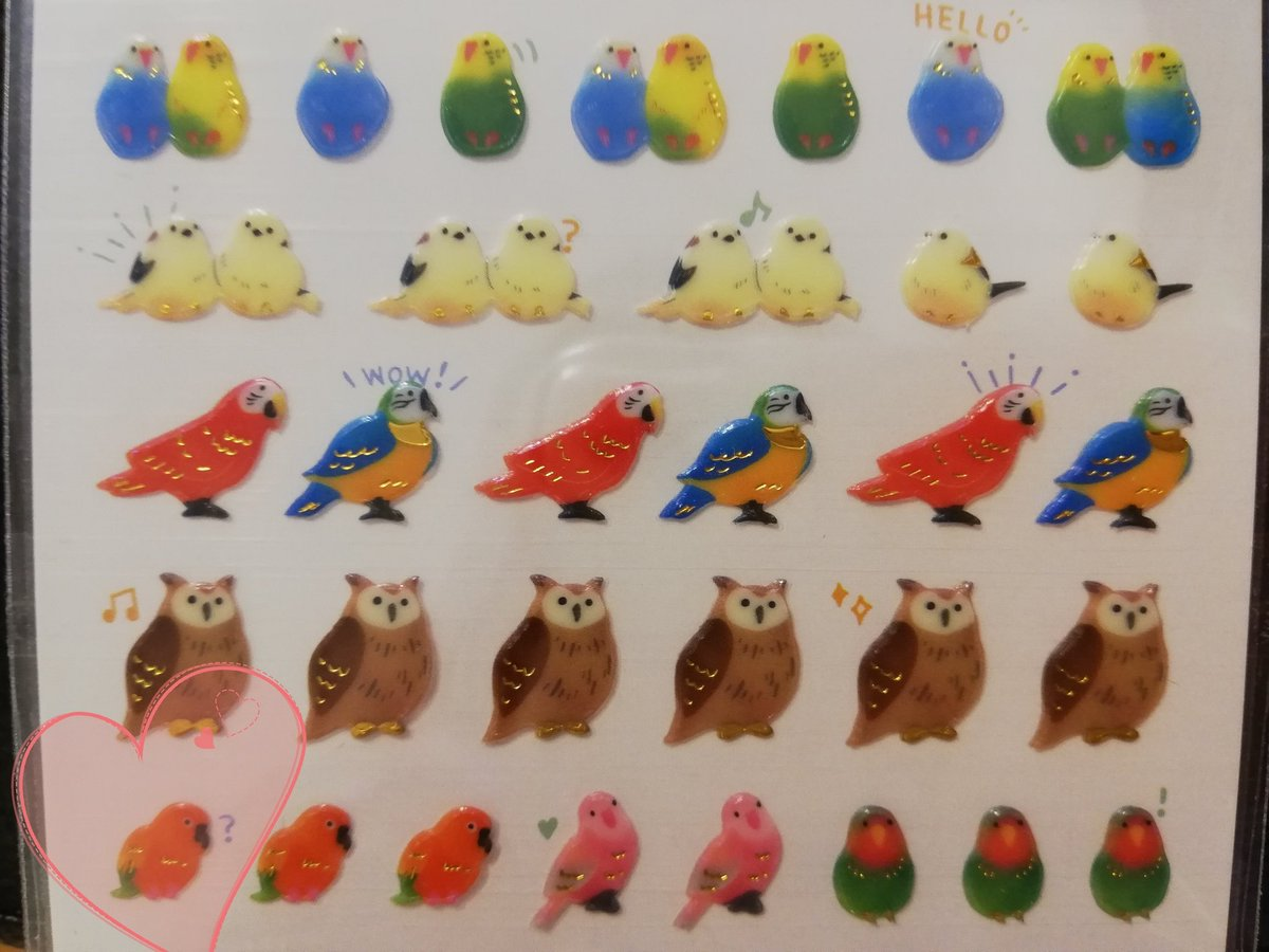 test ツイッターメディア - #コガネメキシコインコ ちゃんを発見して買いました〜😍 このシール全部可愛い(*´∀`) しかも2枚入り  ペットショップにずーっといて、ある日売れてていなくなっちゃった😭あのコガネメキシコインコちゃん元気かな🍀 ずっとお隣りさんだった45万円の鳥さんはまだいたの🐥  #100円の幸せ #ダイソー https://t.co/4YiLk3jaTs