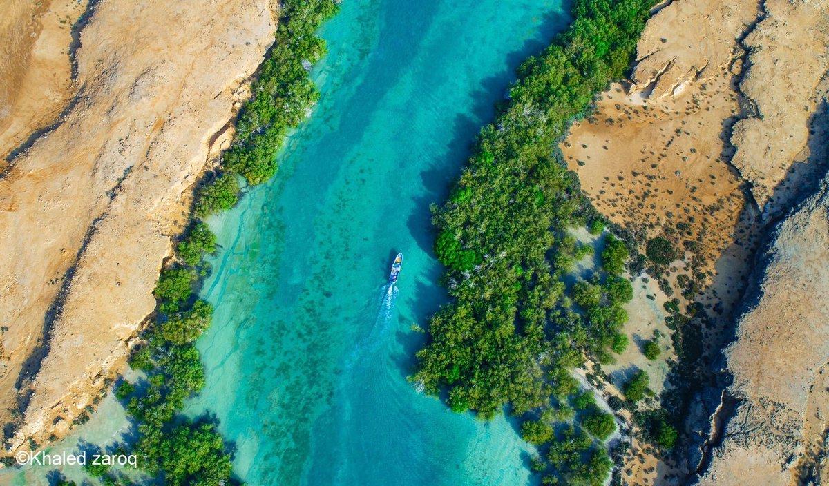 جازان الان On Twitter امير منطقة جازان جزر فرسان ستشهد مشروعات ضخمة بما يتجاوز البليون ونصف البليون ريال لجعل الجزر الوجهة السياحية الأولى في المملكة Https T Co Jqar4dft77