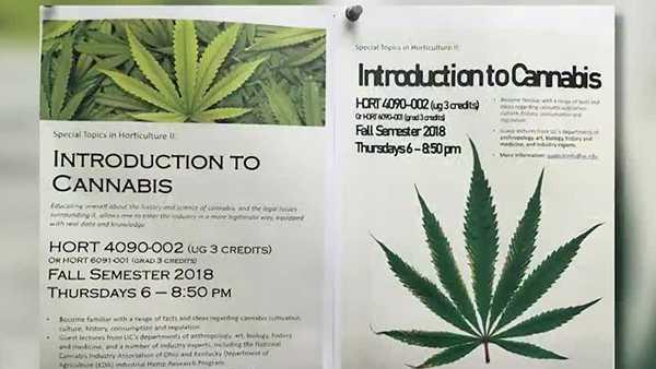 加拿大安省药剂师学会最新规定 药剂师必须完成大麻课程
