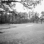 Image for the Tweet beginning: Augusta 1960. #15