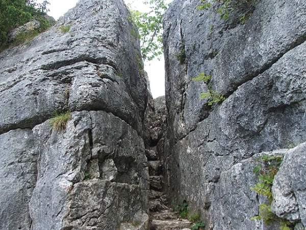 "Nr. the village of Beetham, you'll find the Fairy Steps. Carved into limestone rock, local tradition says that if you can negotiate them without touching the sides, fairies will grant you a wish. Not any easy achievement for someone of my 6'4"" stature. #folklore #faeries #Cumbria"