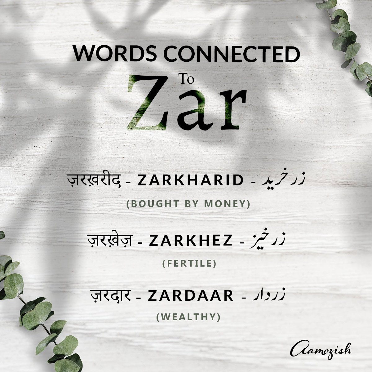 Aamozish On Twitter Words Connected To Zar Learnurdu