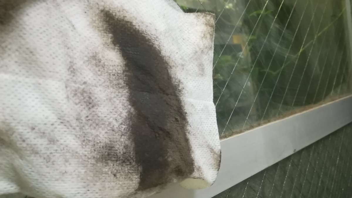 test ツイッターメディア - ダイソーの「ガラス&家電用クリーナー」って奴が凄いいい(≧∇≦)b アパートに引っ越してから4年間放置してた窓ガラスの外側を拭いたら、凄い汚れ落ちたw 正直キモいくらい… でも良かったぁ〜 #ダイソー #ダイソー商品 https://t.co/Jhn9IMG8IO