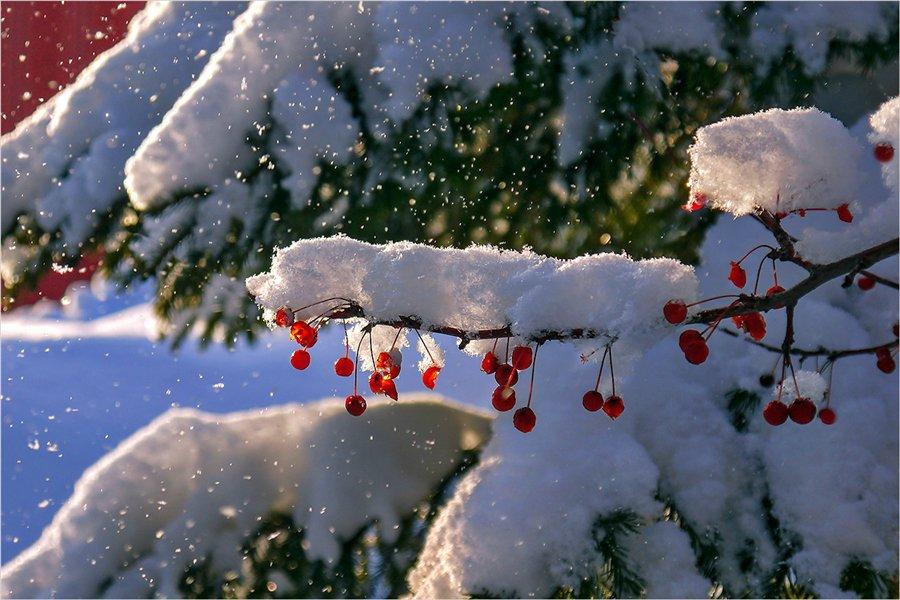 Открытка снег идет