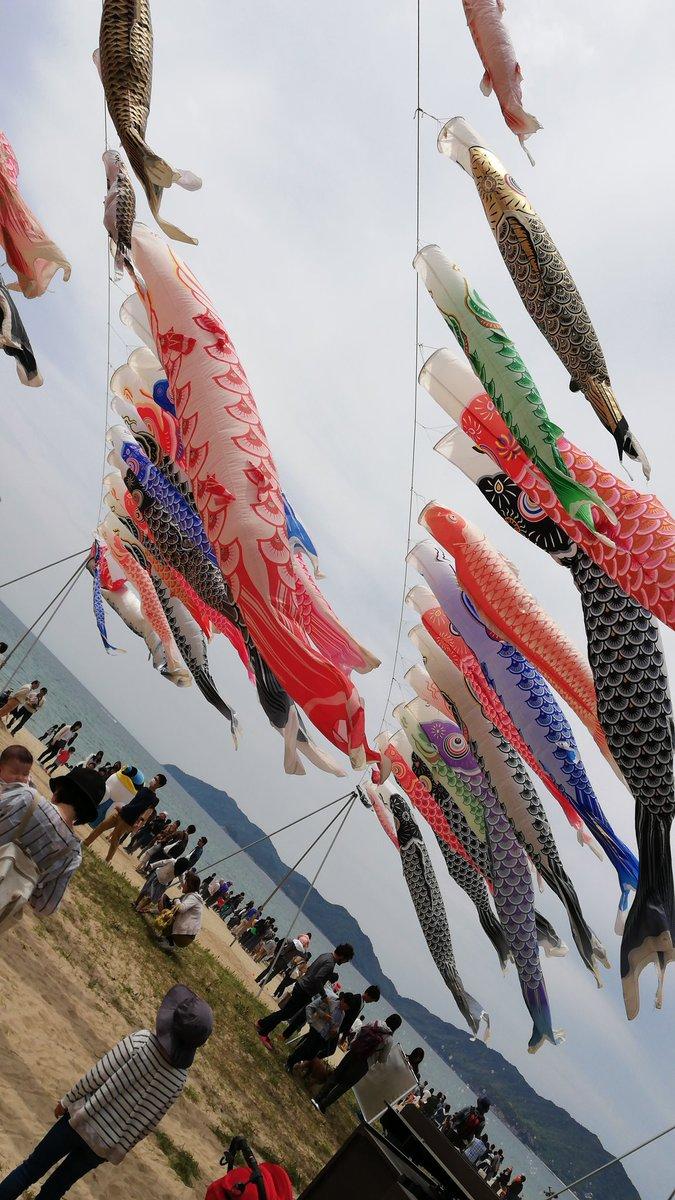 山口県光市の海で有名な虹ケ浜に来ています!!!! 虹ケ浜に大量の鯉のぼりが飾られています!!!! 【青い鯉のぼりプロジェクト】空も海も心もつながっている がなんか合言葉っぽいです ぜち来てみてください https://t.co/utJyu1wQUH