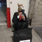 ハイポーションを作ってた馬犬のコスプレイヤーがいた!