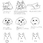 ペットのそれぞれの性格がおもしろいw顔に出ないハムスター!