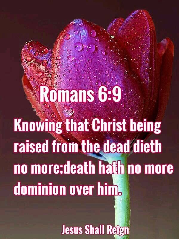 """Diva's Den Fashion on Twitter: """"Romans 6:9 KJV 9 Knowing that Christ being  raised from the dead dieth no more; death hath no more dominion over him.  #Jesus #God #DivasDenFashion #knowing #that #"""
