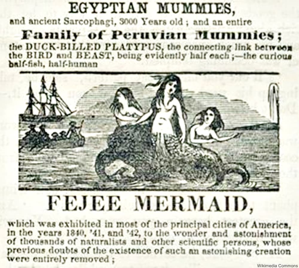 Whores Of Yore On Twitter The Feejee Or Fiji Mermaid Was