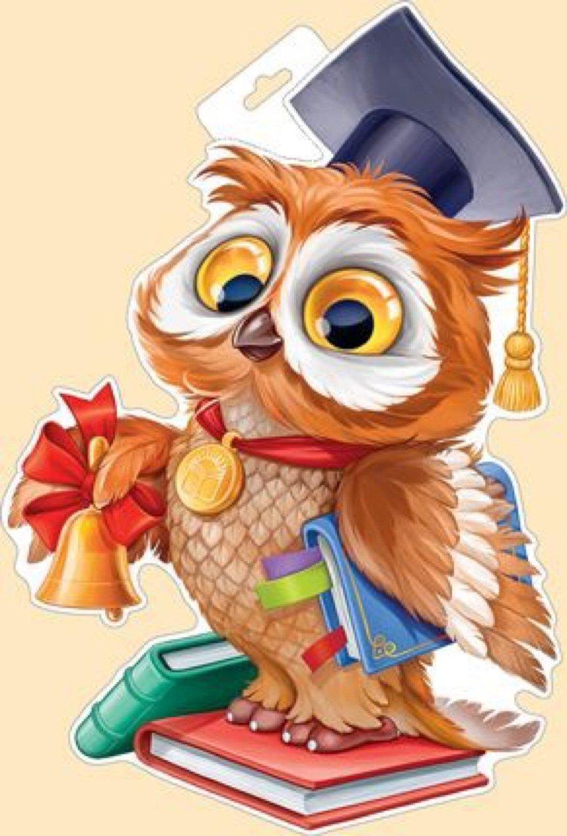 Картинки сова с книгой для детей