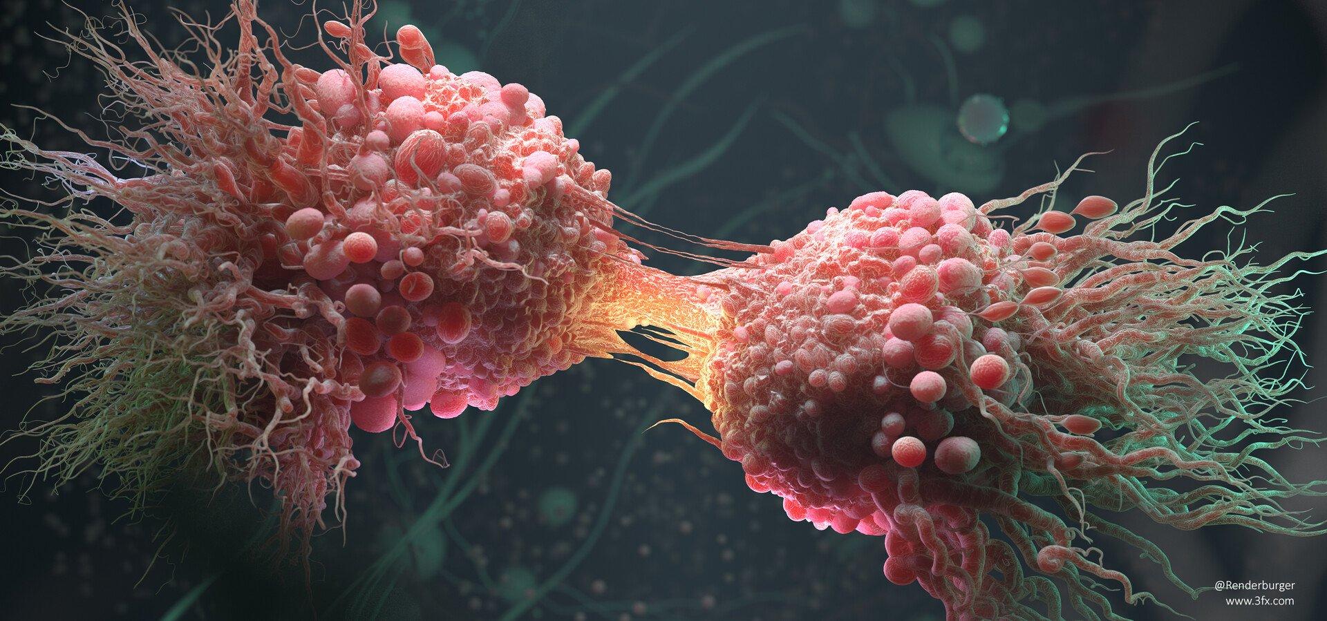 раковые клетки картинки неоднократно приходилось менять