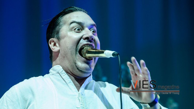 Interview W Mike Patton Bill Gould