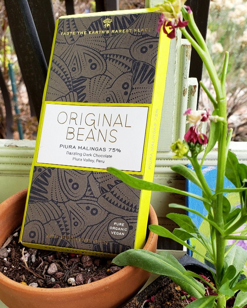 It's Monday afternoon.   Time for chocolate.   This bar by @Original_Beans Is perfect for a Spring day... featuring notes of lemon, red berry, and passionfruit!   What's your #MotivationMonday chocolate?  #ChocolateoftheDay #singleorigin #darkchocolate  #Piura #Malingas #Peru