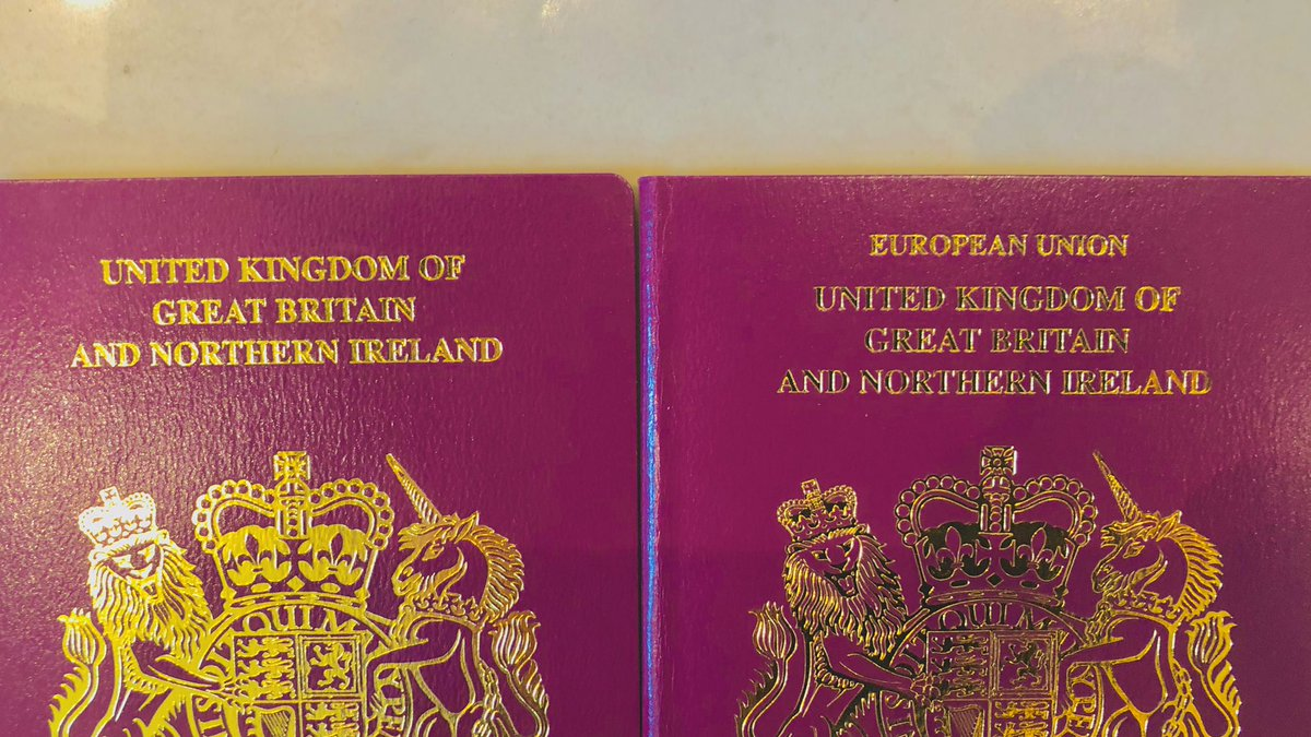 My twins are nearly 5. In light of #BrexitChaos I applied, on the same day, for new passports, to ensure six months' validity. Both have now arrived. One of my #twins is in the EU, the other not. What better metaphor could there be for a divided nation.  #BrexitDeal #PeoplesVote
